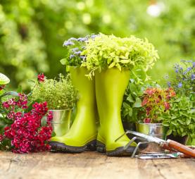 Home Gardeners School