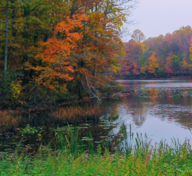 Photo of fall landscapes in New Jersey